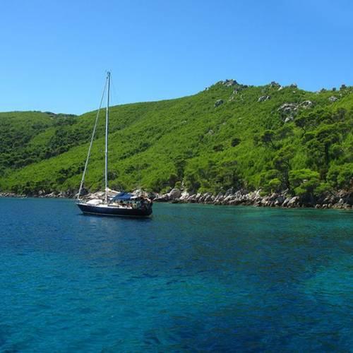Island Olipa